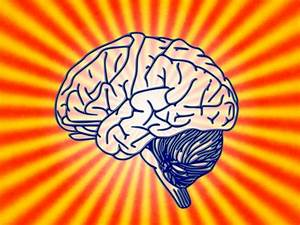 Are We Living In The Age Of The Brain