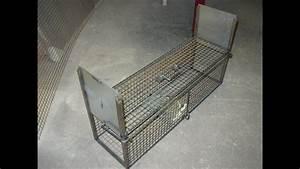 Comment Pieger Une Fouine : fabrication d 39 un pi ge cage youtube ~ Medecine-chirurgie-esthetiques.com Avis de Voitures