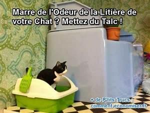 Litiere Chat Sans Odeur : 1000 id es sur le th me sens de la vie sur pinterest ~ Premium-room.com Idées de Décoration