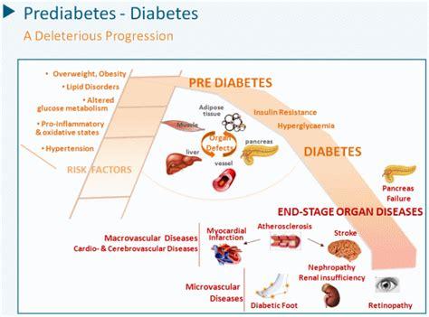 diabetes dialectics