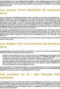 Produit Contre Les Punaises De Lit : punaises infos sur les punaises de lit solutions contre ~ Dailycaller-alerts.com Idées de Décoration