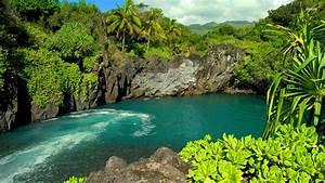 Lagoon In Maui Hawaii - WallDevil