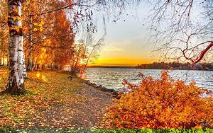 25+ Autumn Wallpapers, Backgrounds, Images, Pictures ...