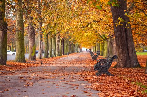 32 Excellent Things To Do In London This Month: October ...