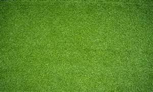Green Field Background