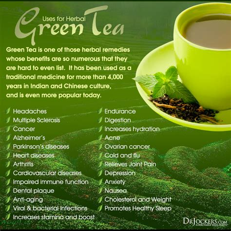 The post is black coffee good for you? Top 10 Health Benefits of Green Tea - DrJockers.com