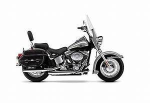 Harley Davidson Softail Models Service Manual Repair 2003