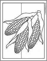 Corn Coloring Pages Thanksgiving Ear Ears Fall Cob Harvest Husk Three Pdf Autumn Stalk Fun Template Printable Print Summer Colorwithfuzzy sketch template