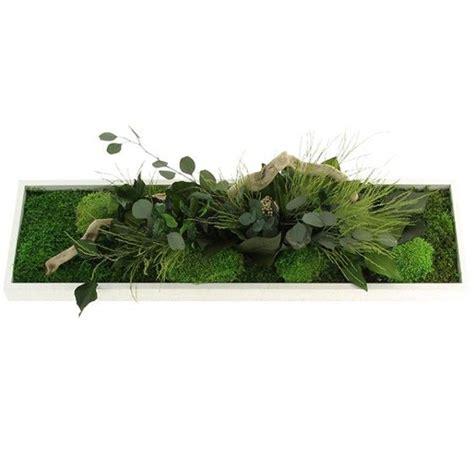 1000 ideas about tableau vegetal on vanda tableau v 233 g 233 tal stabilis 233 and foug 232 re