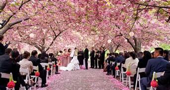 botanical gardens wedding cost botanical garden cost wedding garden ftempo