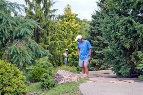 chicago botanic garden dwarf conifer garden