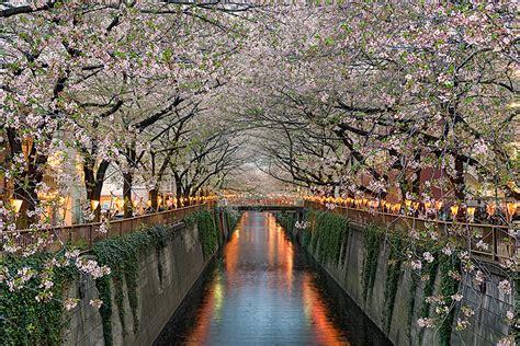 tokyo archives travel photography blog  elia locardi