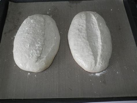 dough   wet  soft updated   nov sourdough