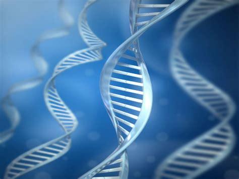 loss   chromosome  men tied  alzheimers risk