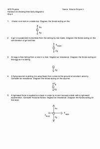 32 Free Body Diagram Worksheet With Answers