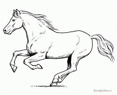 Horse Running Coloring Pages Printable Drawing Horses