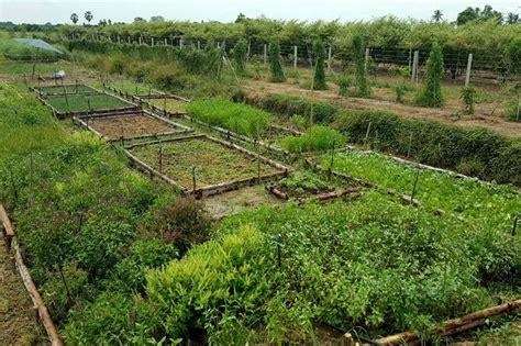 เกษตรเอสเอ็มอี - โพสต์ทูเดย์ SME