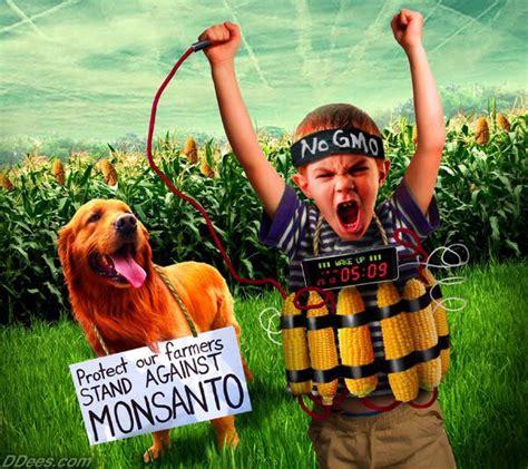 monsanto supreme court supreme court monsanto victory farmers on gmo