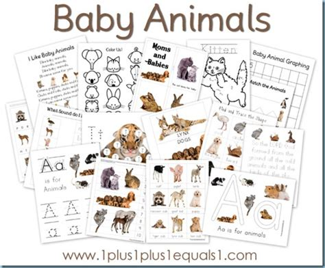 baby animals printable pack free 1 1 1 1 245   Baby Animals thumb3
