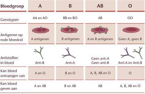 soorten bloedgroepen