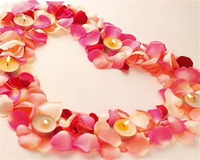Valentine Heart Flower Romantic Wallpapers Desktop Computer