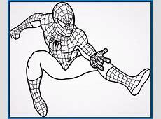 Spiderman Para Colorear wwwpixsharkcom Images