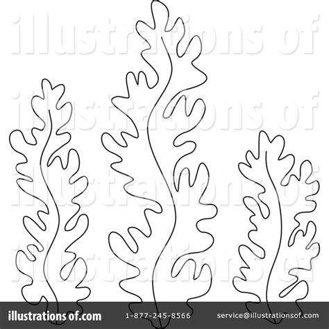 seaweed coloring pages    print