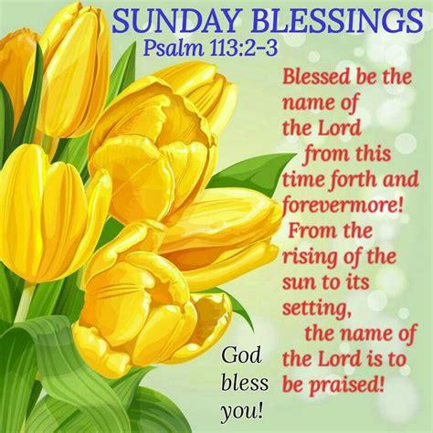 sunday blessings psalm   pretty flower art