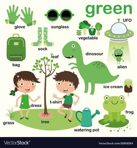 green color educate color  vocabulary english vector