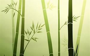 Nature Computer Wallpapers, Desktop Backgrounds ...