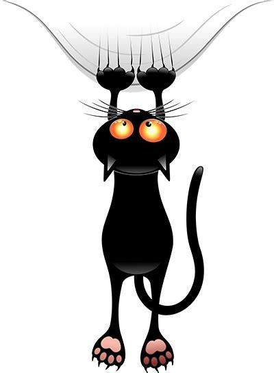 halloween black cat halloween myniceprofilecom