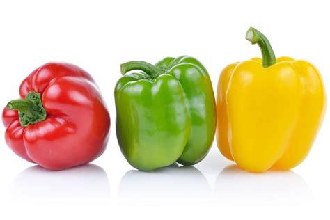 cuisiner poivrons tout sur le poivron le choisir le cuisiner le conserver