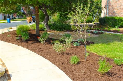 alternatives to grass in backyard xeriscaping archives diana s designs 7429