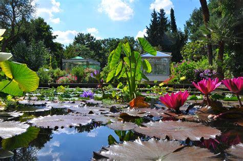 Botanischer Garten Berlin Seerosen by Einrichtungen Department Biologie