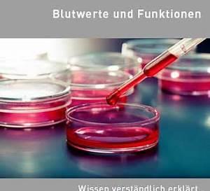 Osmolarität Berechnen : rbc wert im blutbild erythrozytenzahl ~ Themetempest.com Abrechnung