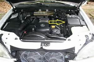 2001 Mercedes Ml320 Start Error