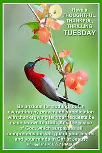 Thoughtful, Tha... Cebuano Good Morning Quotes