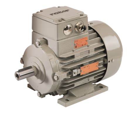 Regal Electric Motors by Regal Uk Rotor Uk Limited Installing And Operating