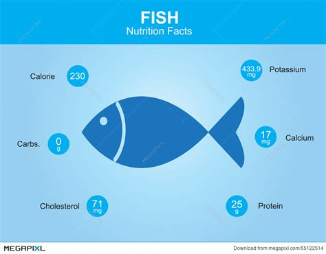 fish nutrition facts nutritional information grouper vector raw fda