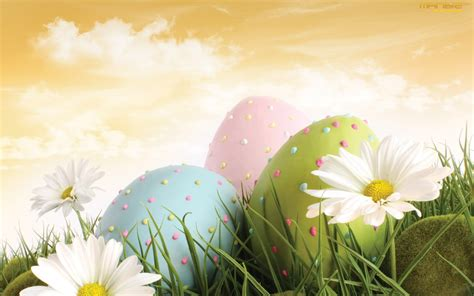 easter wallpaper   cool funny