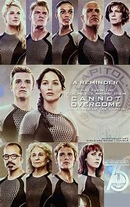 Catching fire tributes | Catching Fire - 2nd Book in ...