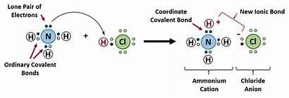Electron Diagram Dot Which Chemistry Covalent Ammonium