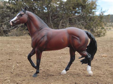 quarter horses horse stallion bay breyer dark starlight champion jameson olena grays cash smart