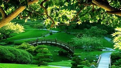 Relaxing Meditation Bamboo Flute Garden Background Melody