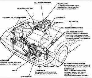 I Have An 1987 Honda Accord Lxi I Cannot Find Out Where