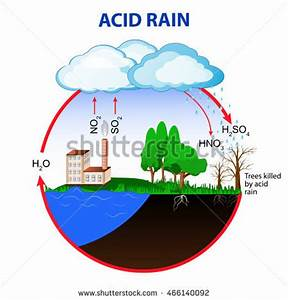 Acid Rain Caused By Emissions Sulfur Stock Illustration ...