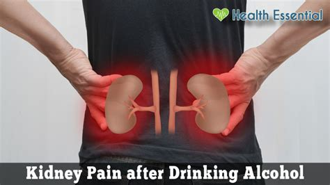 kidney pain  drinking alcohol   remedies