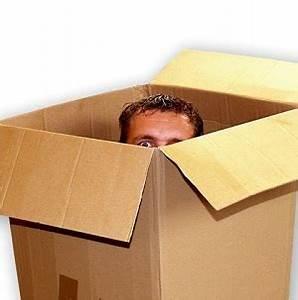 Living In The Box : living inside the box mark america ~ Markanthonyermac.com Haus und Dekorationen