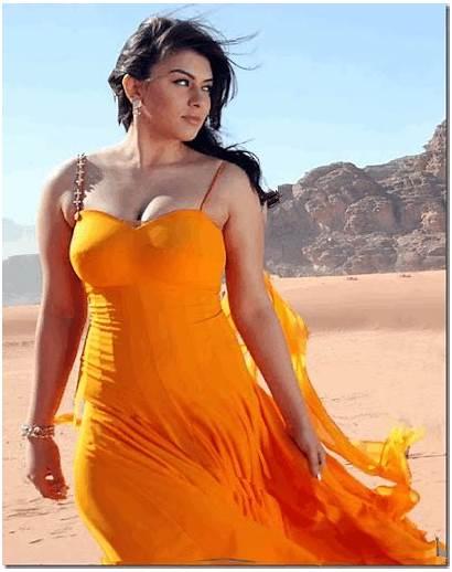 Hansika Motwani Wallpapers Actress Indian Actresses South