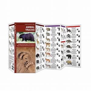 Animal Tracks - Waterproof
